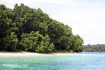 Peucang Island beach [java_0440]