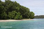 Peucang Island beach [java_0442]
