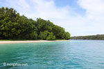 Peucang Island beach [java_0443]