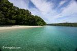 Peucang Island beach [java_0469]