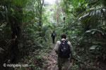 Rhino Protection Unit on patrol in Ujung Kulon NP