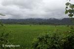 Coastline near Sunur, West Java