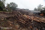 Teak log dump outside a sawmill