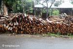 Logs outside an Indonesian sawmill
