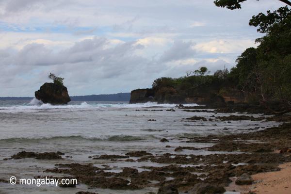 Waves breaking on the ocean-side coastline of Peucang Island [java_0071]