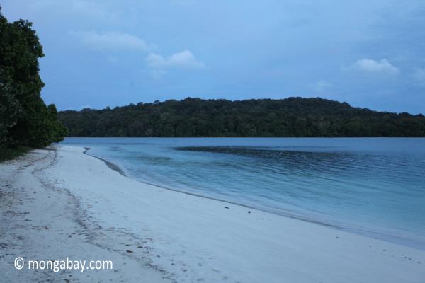 Beach on Peucang Island [java_0132]