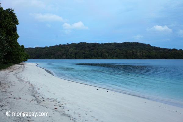 Beach on Peucang Island [java_0133]