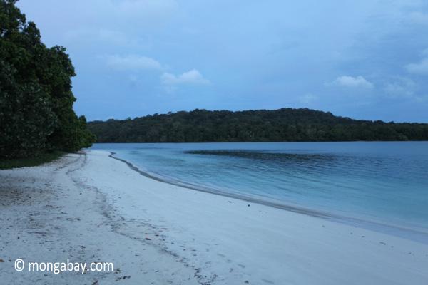 Beach on Peucang Island [java_0135]