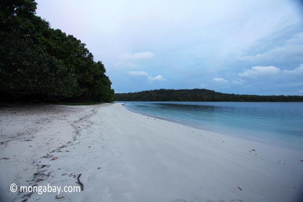 Beach on Peucang Island [java_0136]