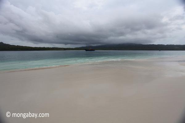 Beach on Peucang Island [java_0144]