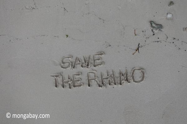 Save the Rhino [java_0159]