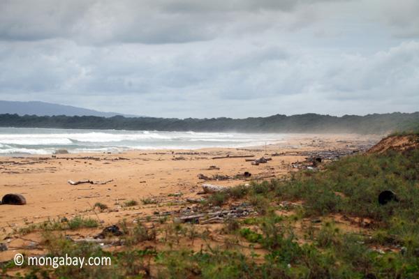 Ujung Kulon beach [java_0313]