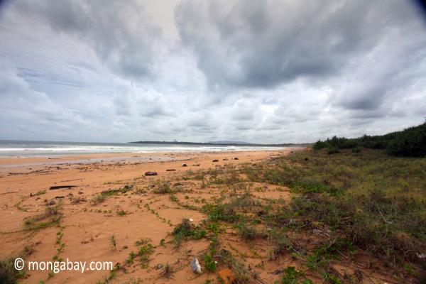 Ujung Kulon beach