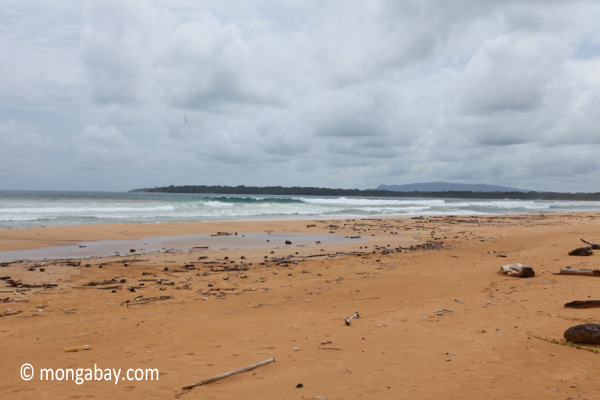 Surf breaking on a beach in Ujung Kulon [java_0318]