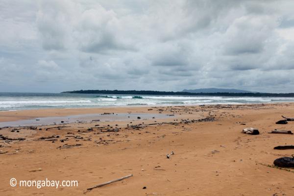 Surf breaking on a beach in Ujung Kulon