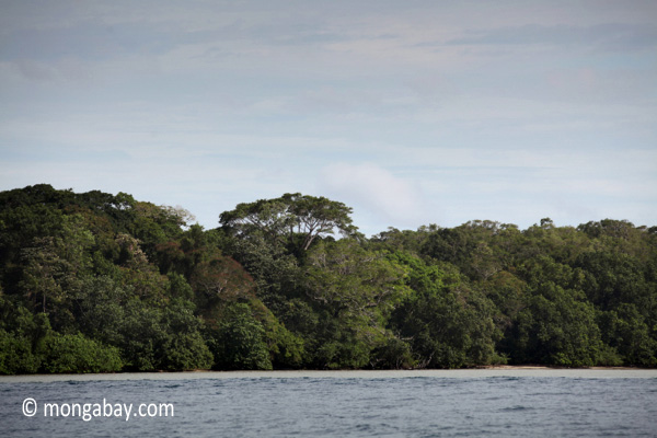 Peucang Island, West Java, Indonesia [java_0413]