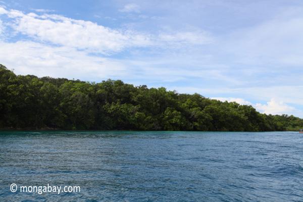 Peucang Island, West Java, Indonesia [java_0415]
