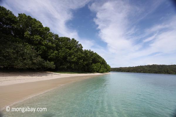 Peucang Island beach [java_0455]