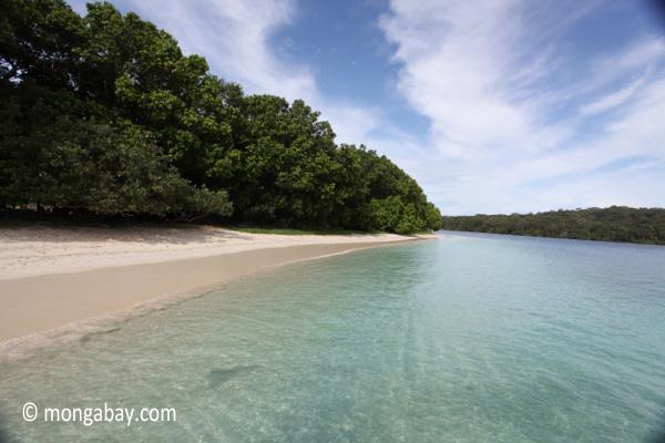 Peucang Island beach [java_0457]