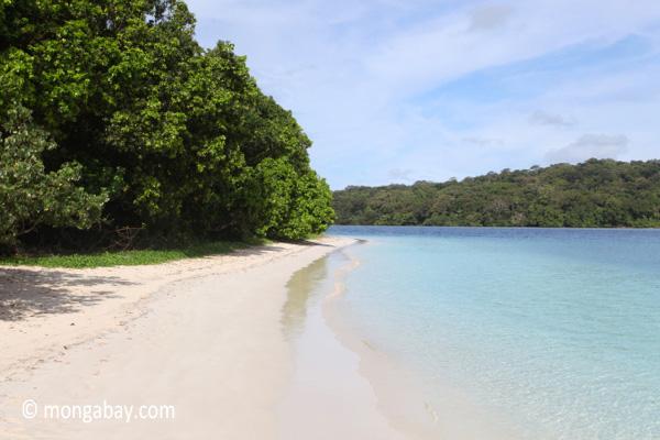 Peucang Island beach [java_0462]