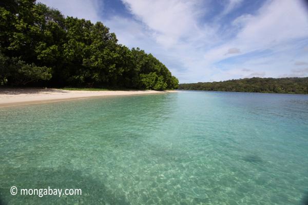 Peucang Island beach [java_0474]