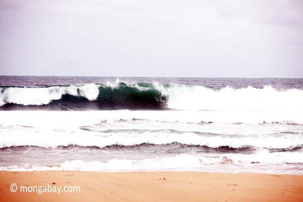 Breaking surf in West Java [java_0804]