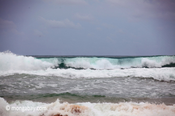 Surf in West Java
