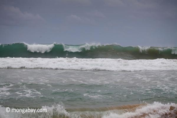 Breaking surf in West Java [java_0812]