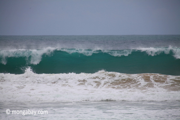 Surf crashing on the western-most part of Java