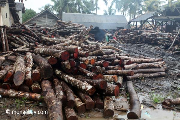 Sawmill for teak logs in Java