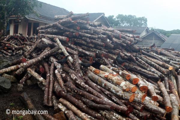 Indonesian sawmill