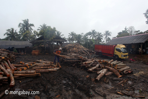 Indonesian sawmill in Java