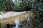 Rainforest creek in Borneo [kalbar_0749]