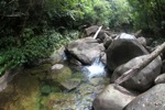 Pool on a rainforest stream at Riam Berasap [kalbar_0815]