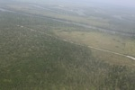 Aerial view of forest degradation in Indonesia