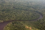 Airplane view of a jungle river in Indonesia's West Kalimantan [kalbar_1179]