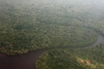 Airplane view of a jungle river in Indonesia's West Kalimantan [kalbar_1181]