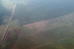 Aerial vew of cleared peatlands in Indonesia's West Kalimantan province [kalbar_1190]