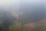 Aerial vew of cleared peatlands in Indonesia's West Kalimantan province [kalbar_1191]