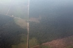 Aerial vew of cleared peatlands in Indonesia's West Kalimantan province [kalbar_1192]