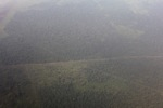 Aerial vew of cleared peatlands in Indonesia's West Kalimantan province [kalbar_1195]