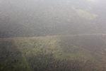 Aerial vew of cleared peatlands in Indonesia's West Kalimantan province