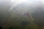 Aerial vew of burning peatlands in Indonesia's West Kalimantan province [kalbar_1185]