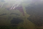 Aerial vew of burning peatlands in Indonesia's West Kalimantan province [kalbar_1196]
