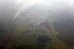 Aerial vew of burning peatlands in Indonesia's West Kalimantan province [kalbar_1202]