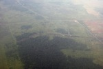 Airplane vew of cleared peatlands in Indonesia's West Kalimantan province [kalbar_1208]