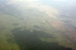Airplane vew of cleared peatlands in Indonesia's West Kalimantan province [kalbar_1210]