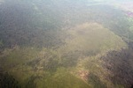 Airplane vew of cleared peatlands in Indonesia's West Kalimantan province [kalbar_1218]