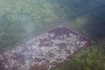 Airplane vew of cleared peatlands in Indonesia's West Kalimantan province [kalbar_1221]