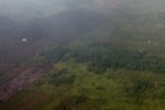 Airplane vew of cleared peatlands in Indonesia's West Kalimantan province [kalbar_1222]